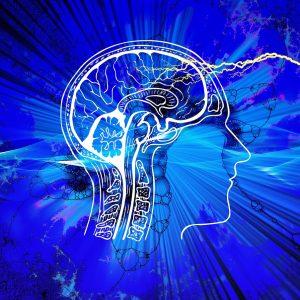 Virginia – Tech Researchers Use Brain Imaging Technique for Diagnosing Mental Disorder